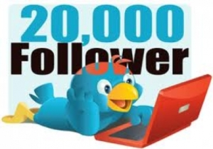20000 (Worldwide) Twitter Followers - 25$